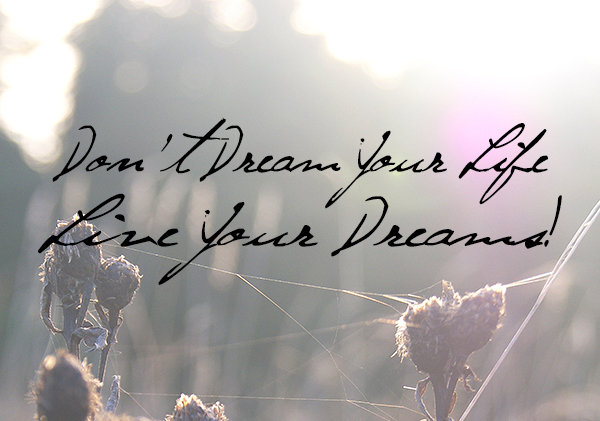 live dreams2